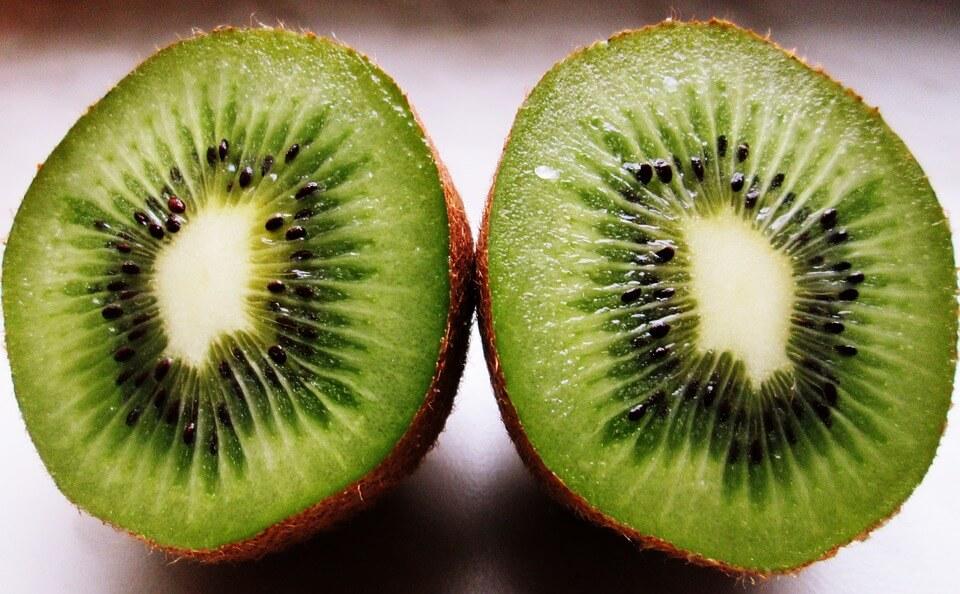 kiwi-1332950_960_720